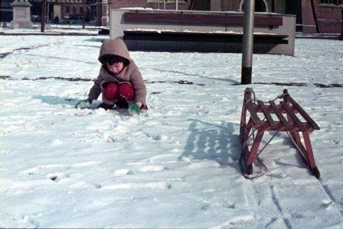 שרון בשלג