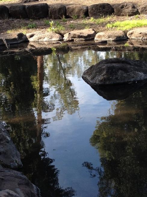 פארק הירדן3