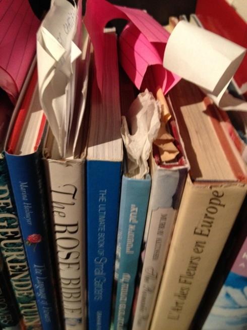 עוד ספרים עם סימונים