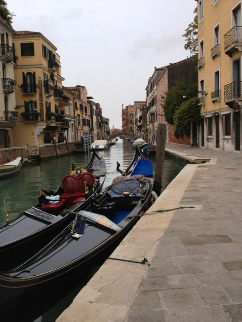 ונציה המופלאה